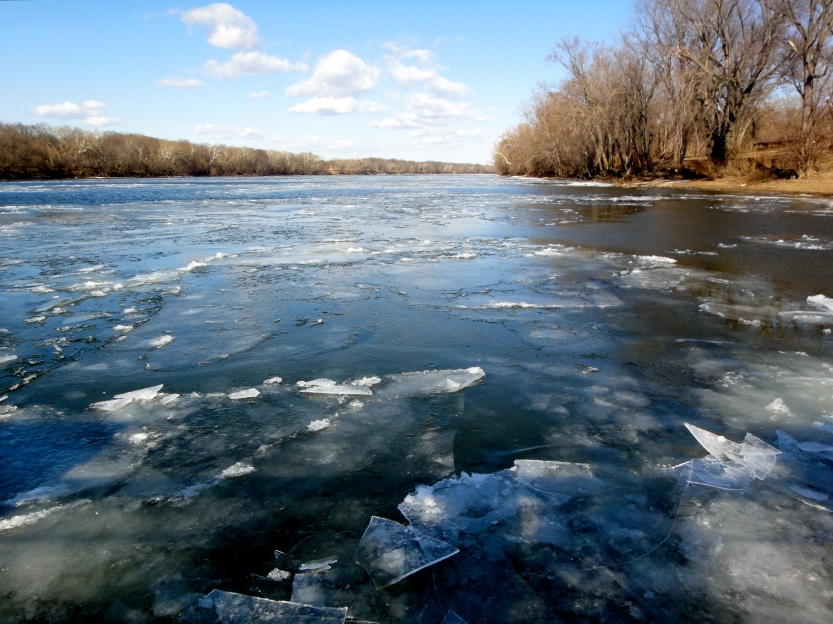 The Potomac River at White's Ferry in January