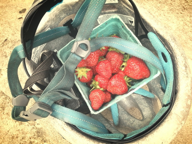 Farmer's market strawberries in the helmet purse.