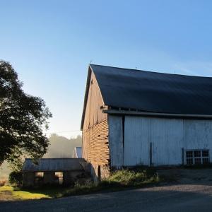Ye Olde Barn Shot