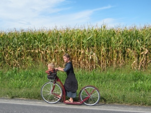 Riding by the tall corn