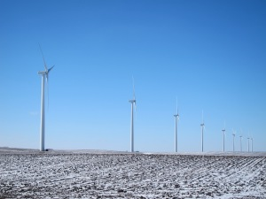 My first good look at the wind farm