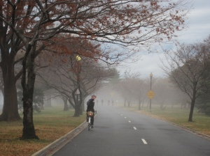 Afternoon fog on the Hains Point 100