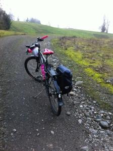 BicycleKitty
