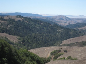 view near the top of loma alta trail
