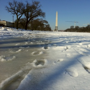 Ice on the Mall