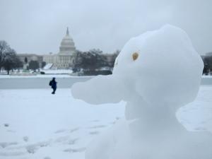 Snowbird. I'd even go so far as to say... a snowduck.
