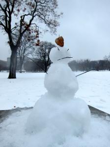 Disgruntled snowman
