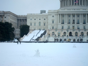 Snowmen dotting the lawn of the Capitol