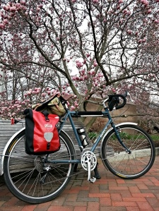 Surly LHT in springtime
