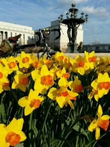 Bartholdi Fountain and daffodils, U.S. Botanic Garden