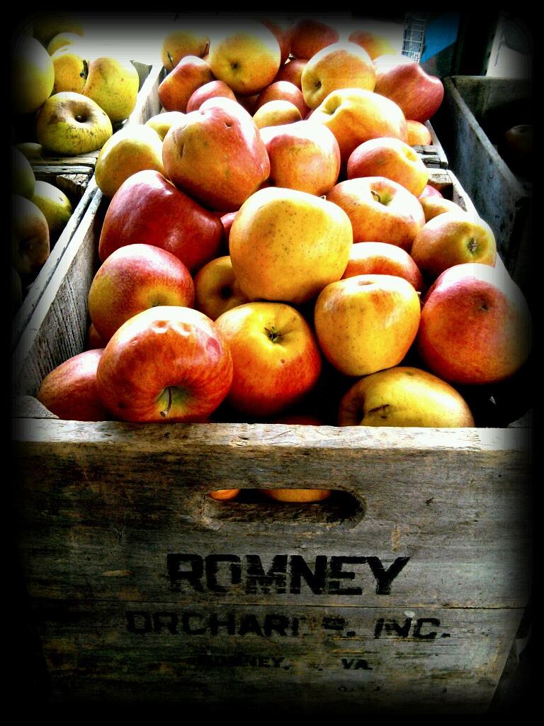Farmer's Market apples