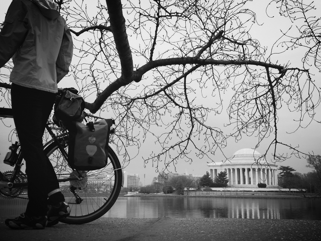 Tidal Basin plus Surly