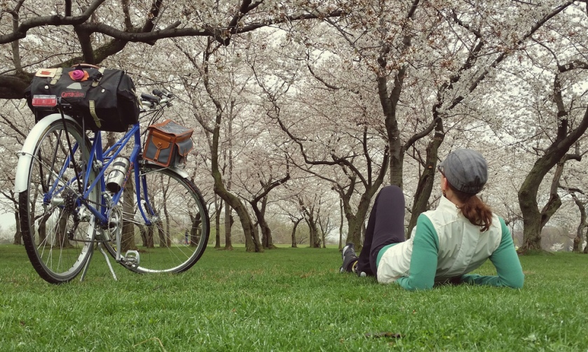 Day 10 Under the blossoms with the mixte