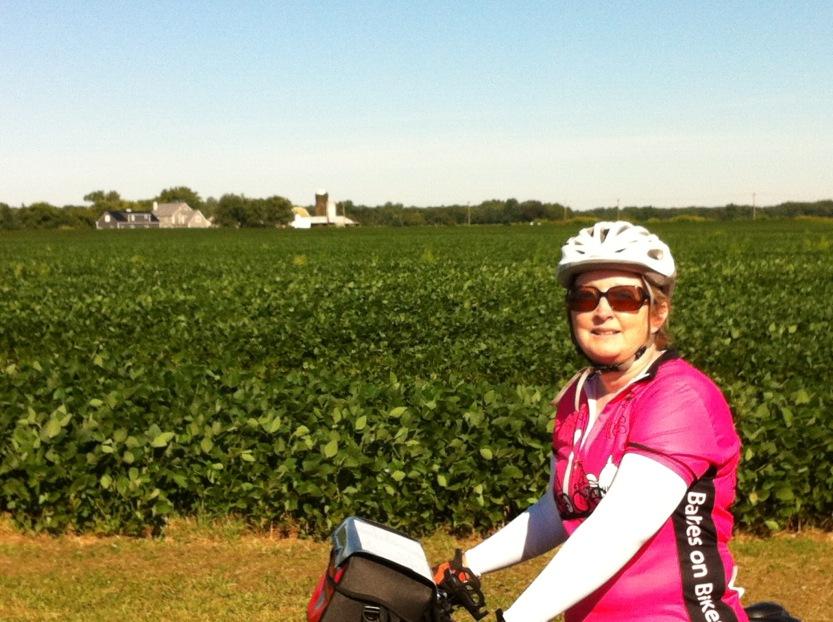 Kelley-Amish Ride - Farm Background