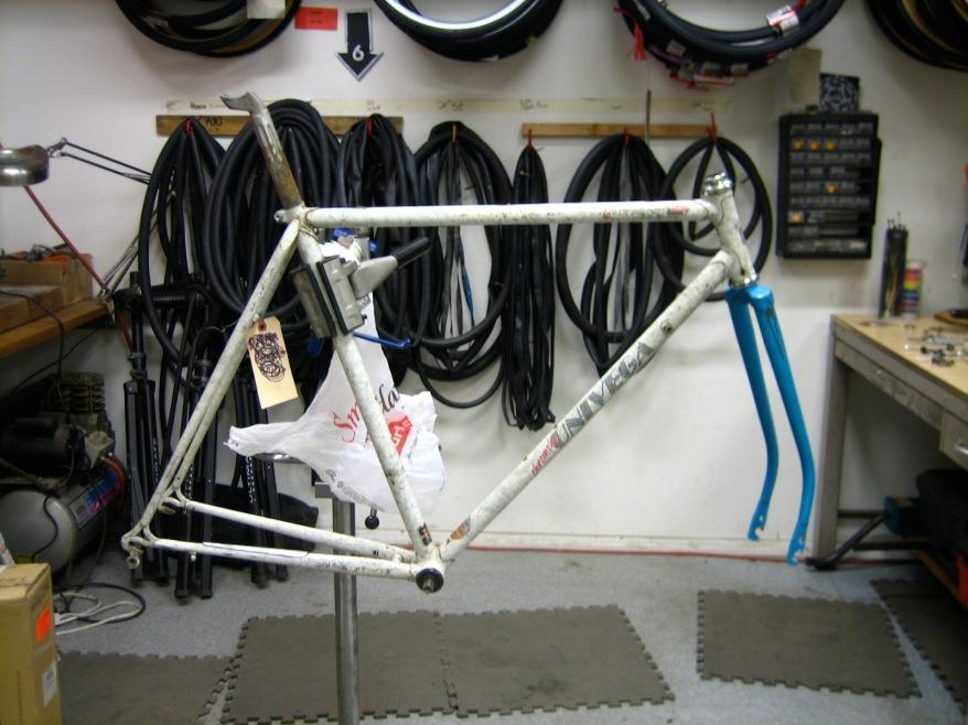 Carolyn - building my bike