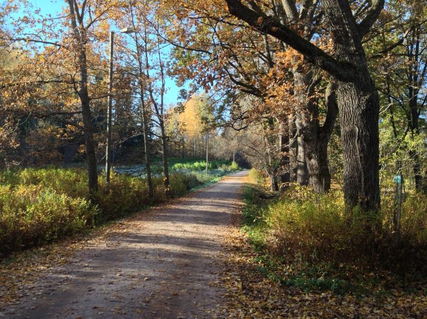 2014-10-18 12.13.48 Jussi Coffeeneuring