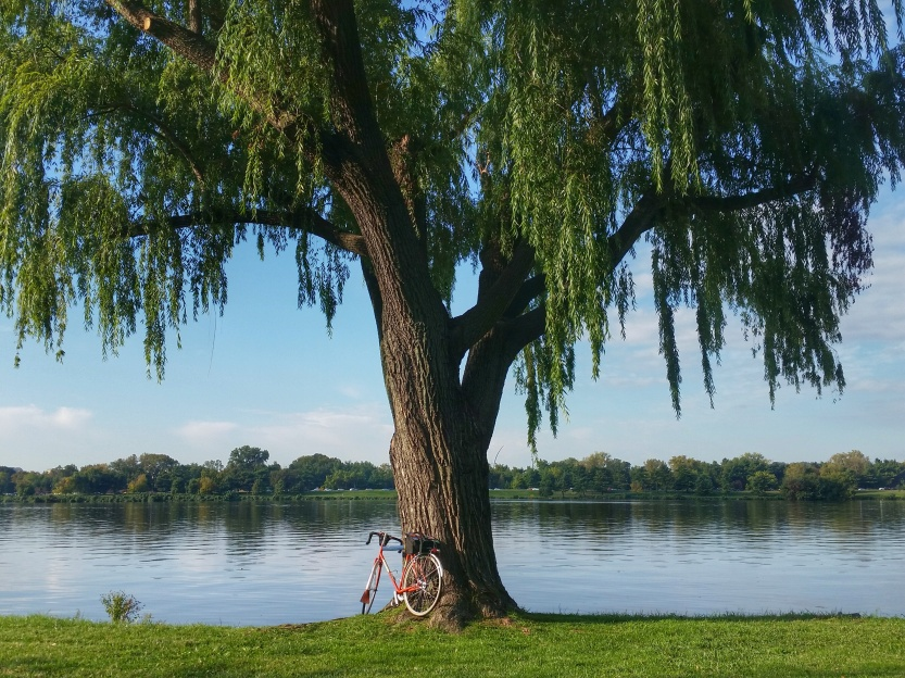 October by the Potomac River