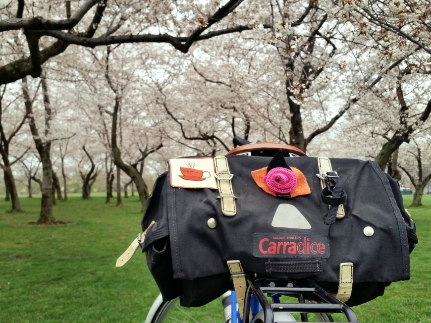 Bike and blossoms
